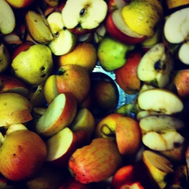 The process of making cider is similar to making beer