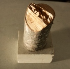 log and block
